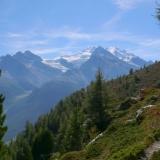 Massif du Mont-Rose au retour du Jungtal