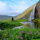 Hornvik Islande