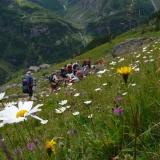 Descente sur le refuge Pastore et Alagna Valsesia